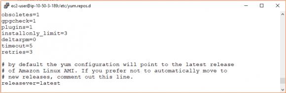 Anstatt des neuesten Releases kann man Amazon Linux auch auf eine bestimmte Version festlegen.