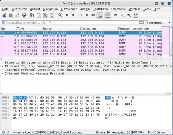 Ergebnis der Aufzeichnung eines Ping in Wireshark