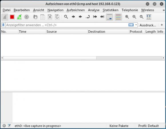 Leeres Aufzeichnungsfenster in Wireshark vor dem Absenden eines Ping.