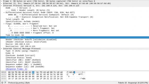 Protocol-Feld auf Layer 3 mit Wert 1 für ICMP