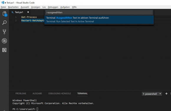 Ausgewählten Text in VSCode ausführen