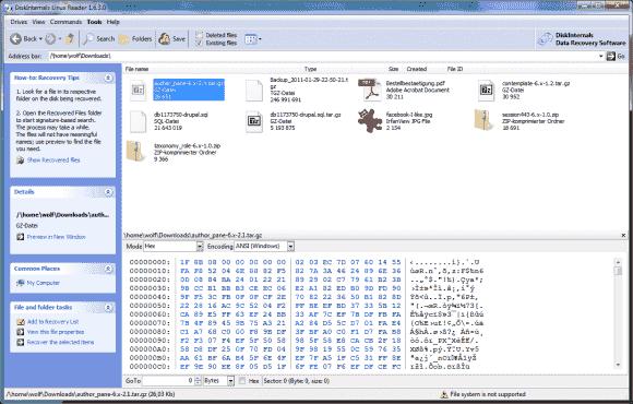DiskInternals Linux Reader kann diverse Images von VMs mounten und Dateien von Linux-Partitionen lesen.