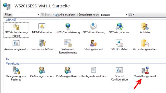 Nach der Installation des IIS-Verwaltungsdienstes erhält der IIS-Manager ein Icon für dessen Management.