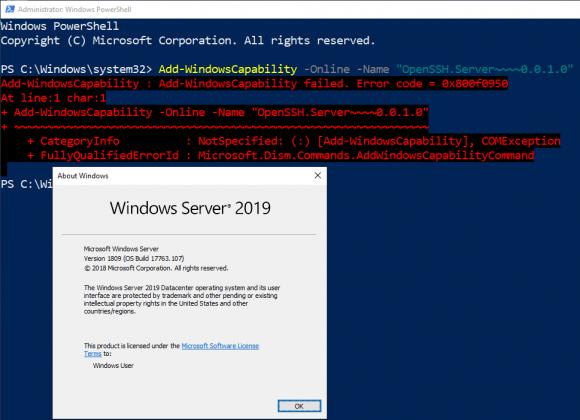 Auf frühen Builds von Windows Server 2019 scheitert die Installation von OpenSSH-Server.