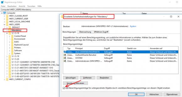 Alle Anwendungspakete erhalten auch Vollzugriff auf den Registry-Zweig ntuser.man