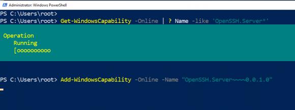 OpenSSH-Server über PowerShell hinzufügen