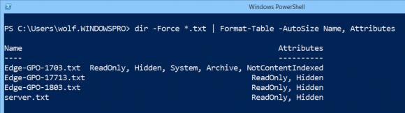 Die Eigenschaft Attributes von Dateisystemobjekten ausgeben und formatieren