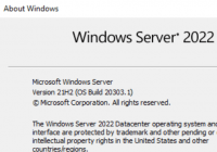 Windows Server 2022 winver