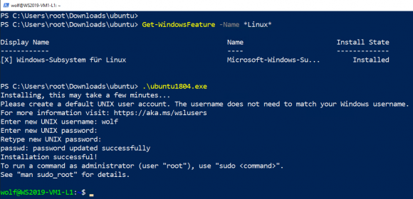 Ubuntu 18.04 für WSL installieren