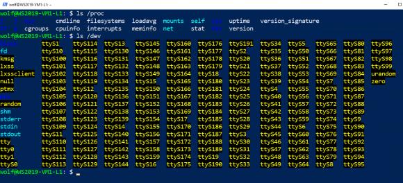 Im WSL-Ubuntu finden sich unter /dev fast nur tty-Geräte