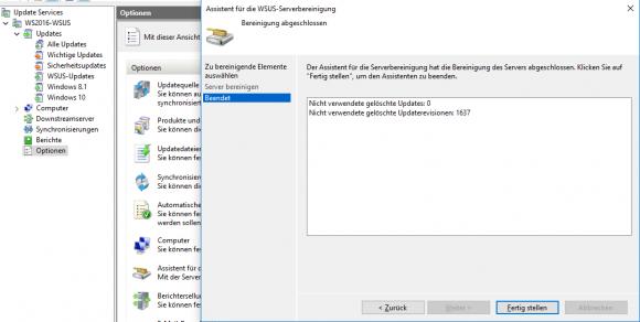 Bericht zur Bereinigung des WSUS-Servers