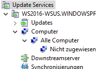 Windows Server Update Services (WSUS) 5.0