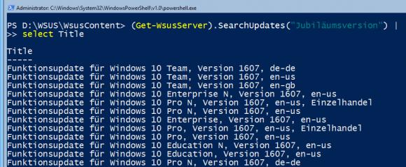 Nach Updates suchen mit der Methode SearchUpdates()