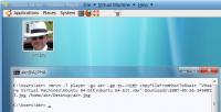 vmrun kopiert eine Datei ins Gastsystem