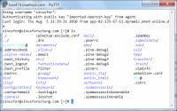 PuTTY greift auf einen Linux-Host zu