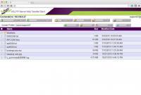 Ein Web-Transfer-Modul ermöglicht beim  WS_FTP-Server die sichere Übermittlung von Dateien.